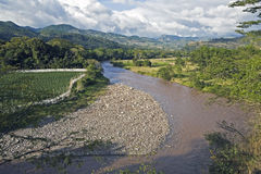 River in Copan Ruins Stock Photography