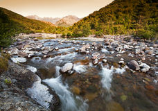 River in Corsica Royalty Free Stock Images