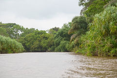 River in Costa Rica Stock Images