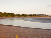 River country scene landscape with wader birds tide out and mud. Flats; England; Essex Stock Photography