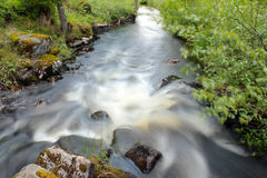 A river in the countryside Royalty Free Stock Images