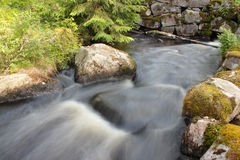 River in the countryside Stock Image