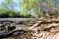 River in countryside. Scenic river in countryside with fallen tree trunks in foreground Stock Photography