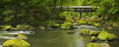 River with a covered bridge in a lush green forest Royalty Free Stock Photos