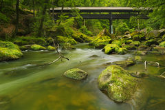 River with a covered bridge in a lush green forest Stock Photos