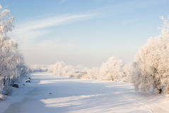 River covered with ice. Winter scene with snowy trees and river covered with ice Stock Image