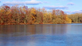 River covered with ice and autumn trees on the other side stock footage