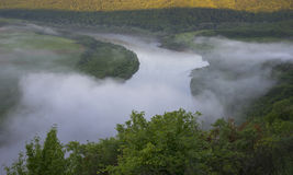River covered with mist and surrounded with green foliage Royalty Free Stock Images