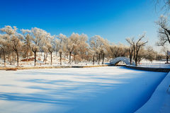 The river covered with snow Royalty Free Stock Photo