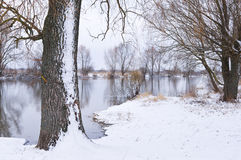 River covered with snow Stock Photography