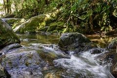 River. Creek in the forest of Itatiaia National Park in Penedo, Rio de Janeiro Royalty Free Stock Photos