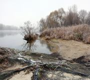 The river creek in a misty cold morning royalty free stock photos