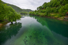 The river of Crnojevic, Montenegro. The river of Crnojevic (Rijeka Crnoevica) near the coast of Skadar lake with transparent green waters,  plants on its bank in Royalty Free Stock Image