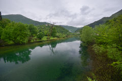 The river of Crnoevic. The river of Crnojevic (Rijeka Crnoevica) near the coast of Skadar lake with transparent green waters,  plants on its bank in the rain Royalty Free Stock Images