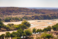 River crossing the desert landscape of Mapungubwe National Park, travel destination in South Africa. Braided Acacia and huge Baoba Stock Image