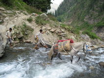 River crossing in India stock images