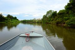 River cruise in Pantanal, Brazil Stock Photo