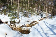 River in Winter Forest Royalty Free Stock Photography