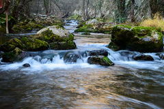 River . A river , crystal clear water and small waterfalls. Stones all over the place Stock Image