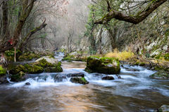 River . A river , crystal clear water and small waterfalls. Stones all over the place Stock Images