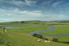 River Cuckmere, East Sussex, England, Uk. Sheep grazing in tranquil rural scene in South Downs National Park Stock Image