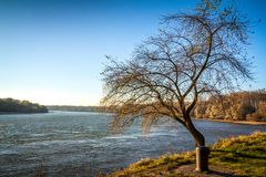 River Danube at autumn. River Danube flows through the autumn landscape royalty free stock photography