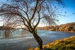 River Danube at autumn. River Danube flows through the autumn landscape stock images