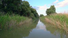 River in Danube Delta stock video footage