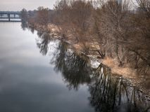 River danube with trees reflecting in the water Royalty Free Stock Images