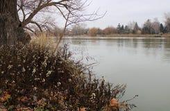 River Danube in winter royalty free stock photo
