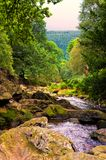 River Dargle Stock Photography