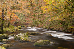 River Dart Stock Photography