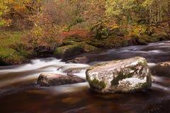 River Dart Royalty Free Stock Photo