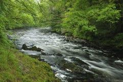 River Dart Stock Photo