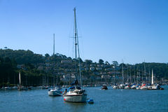 River Dart royalty free stock photos