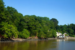 River Dart royalty free stock image