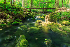 Free River Deep In Mountain Forest Stock Photos - 60538383