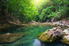 River deep in mountain Royalty Free Stock Photo
