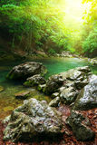 River deep in mountain forest Stock Image