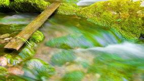 River deep in mountain forest. Stock Photography