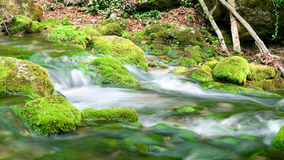 River deep in mountain forest. Royalty Free Stock Photos