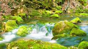 River deep in mountain forest. Royalty Free Stock Images