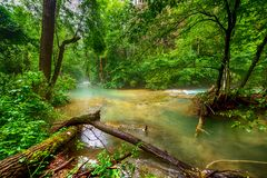River deep in mountain forest Stock Photos