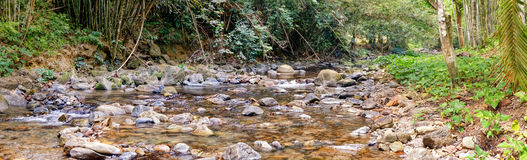 River deep in mountain forest. Panorama of Rainforest and Mountain stream at the Khao Sok National Park, Surat Thani Province, Thailand Stock Photo