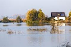 River delta secene Stock Images