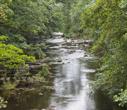 River Derwent Royalty Free Stock Images