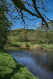 River Derwent near Wrench Green, Scarborough, North Yorkshire royalty free stock photography
