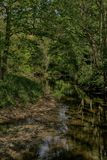 River Derwent near Wrench Green, Scarborough, North Yorkshire stock photography