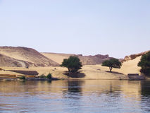 River and Desert Royalty Free Stock Photos