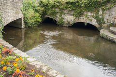 River detail in Vannes Royalty Free Stock Photography